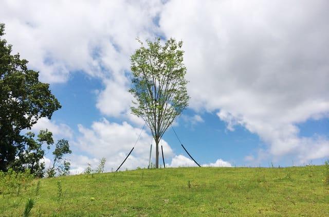 多摩ニュータウン東山分譲地【森5区ヒルズビュースクエア分譲住宅】