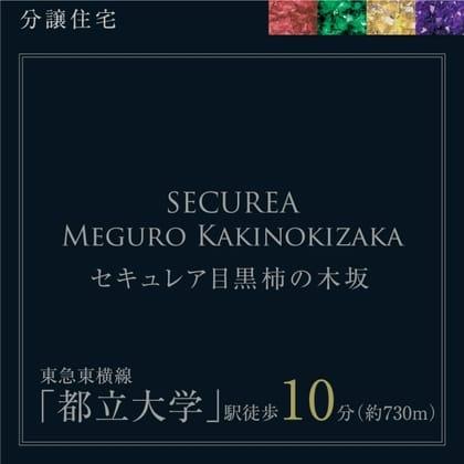セキュレア目黒柿の木坂 (分譲住宅)
